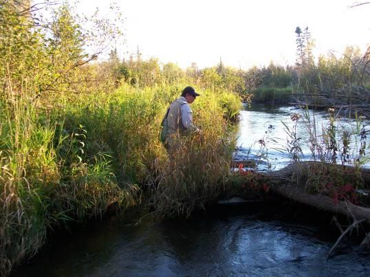 Natch fishing the stretch below Tin Bridge