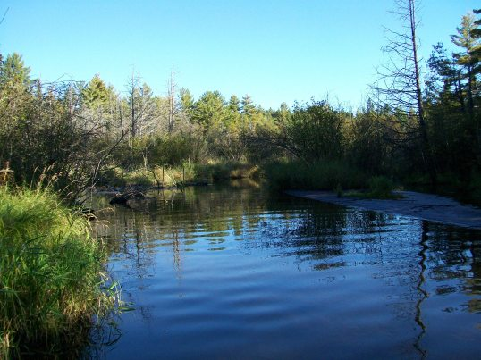 Cornwall Flats section, Pigeon River