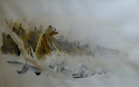 Grizzly watercolor 2