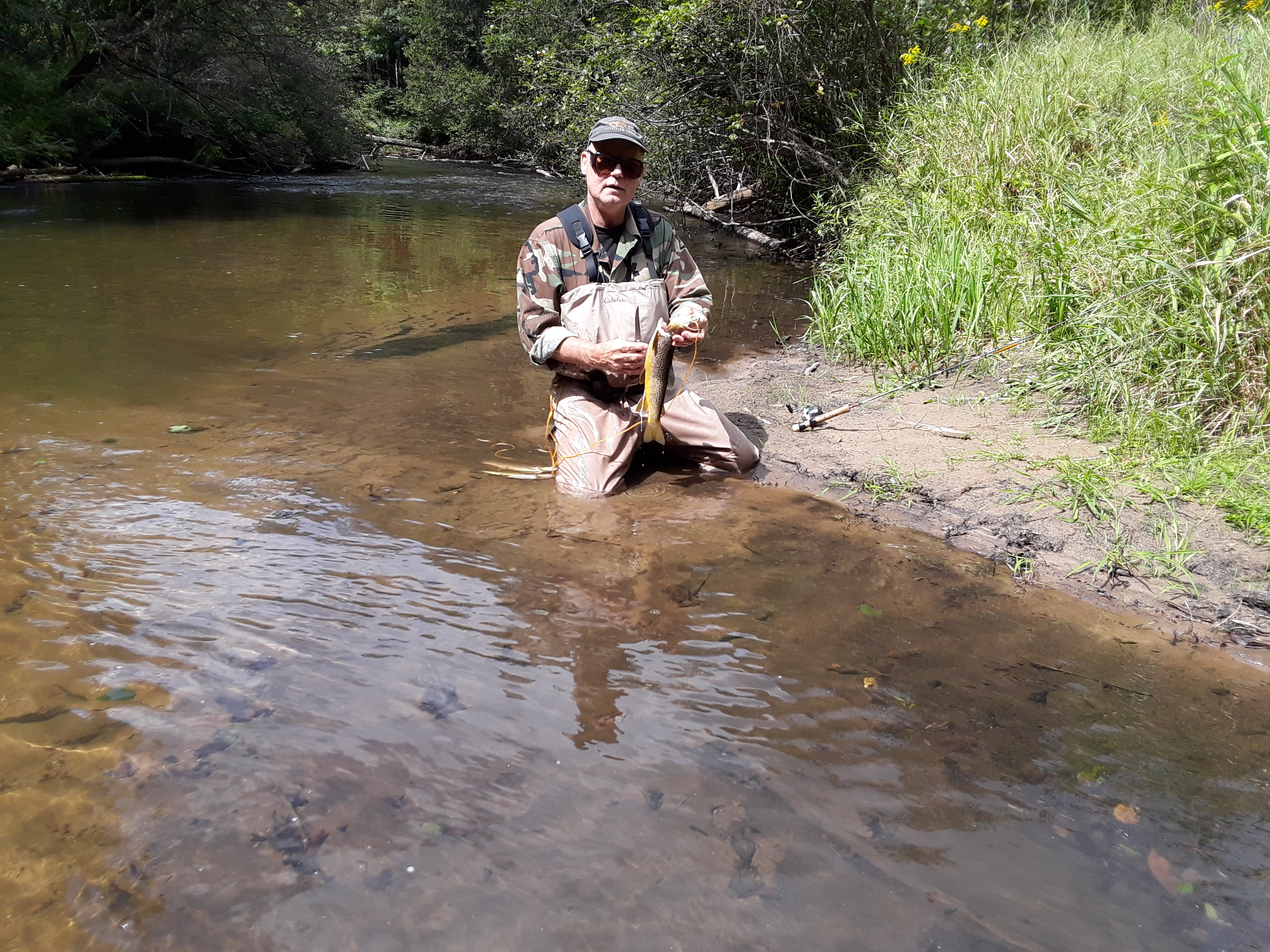Fichigan | Small Stream Trout fishing in Michigan